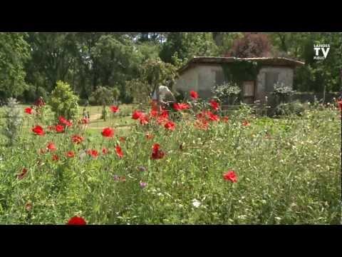 Les Jardins de Nonères : l'intégration sociale par le travail