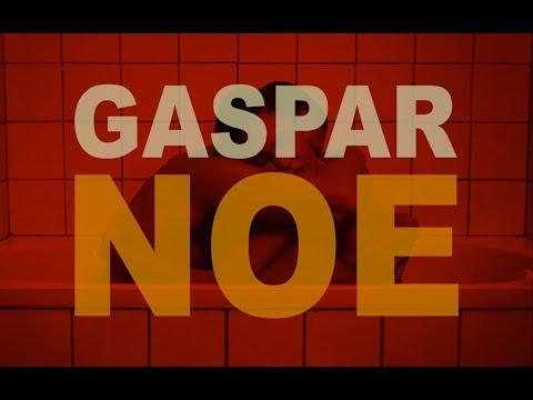 #45 - Gaspar Noé