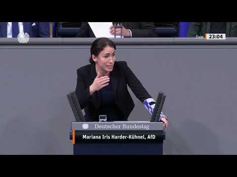 Gewalt an Frauen und Mädchen systematisch bekämpfen 14.11.2019 - Harder-Kühnel AfD - Bananenrepublik