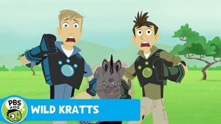 Wild Kratts: The Benefits of Keratin thumbnail