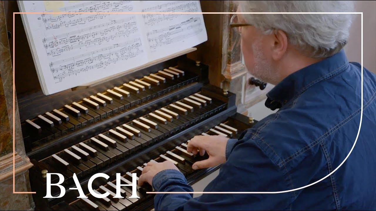 Bach - Wir glauben all an einen Gott BWV 740 - Jellema   Netherlands Bach Society