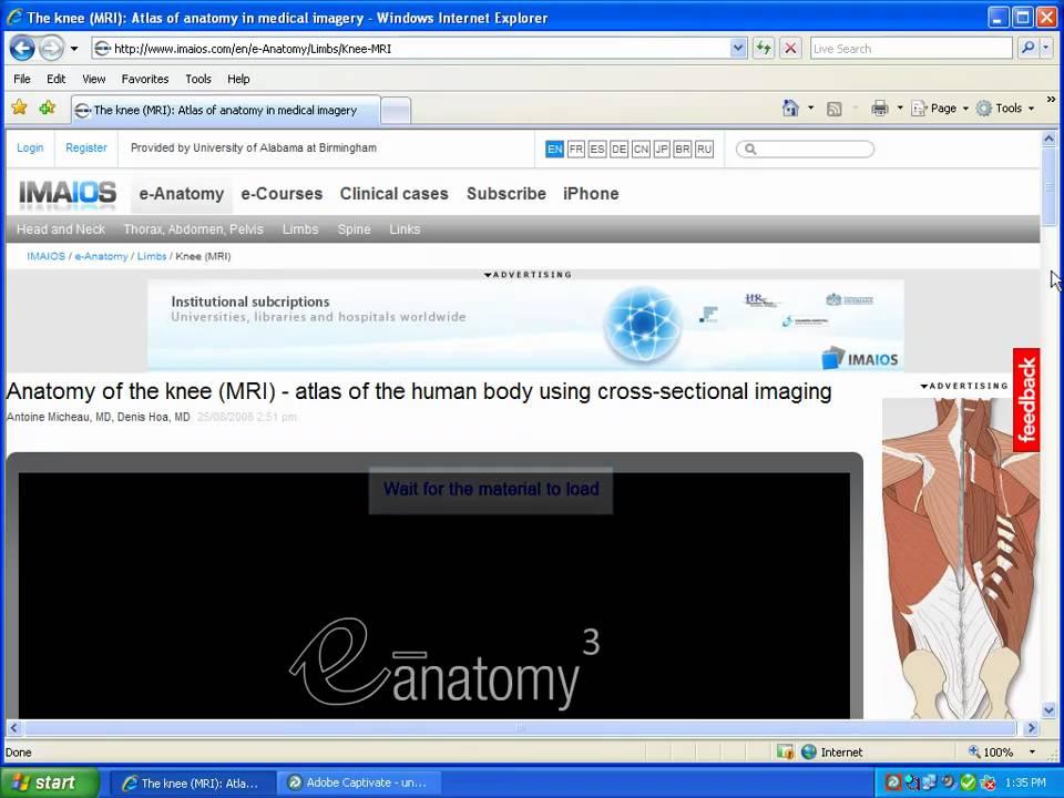 E-Anatomy - YouTube