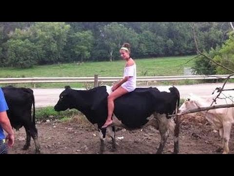 素晴らしい と 牛 エピック 失敗します。 楽しい 女の子 モダン 上 豚 乗馬 ページのトップへ ウイルス性の 女性 世界 らɛχy 10 v