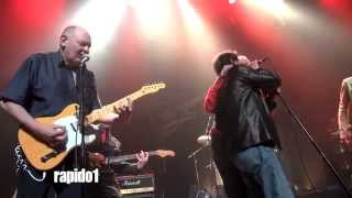 Tribute Dr Feelgood Down To The Doctor Blois 2014