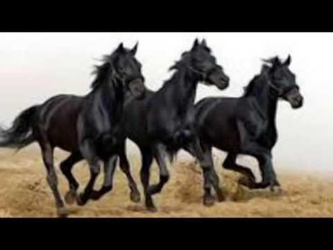 Stipica Mazar Ciji li su ono konji vrani