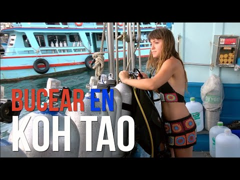 The best of Koh Tao in Thailand