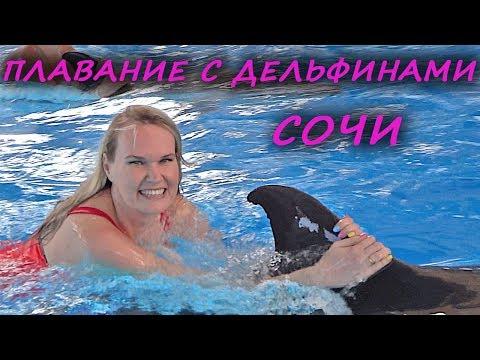 Сочи, плавание с дельфинами, цены