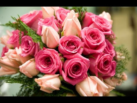 the wonderful flowers pictures - YouTube