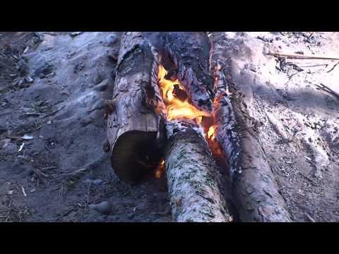 Карелия 2008 Онежское озеро Природа  Lake Onega Nature  自然の中、ロシア、北