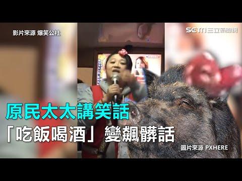 原民太太講笑話 「吃飯喝酒」變飆髒話 三立新聞網SETN.com