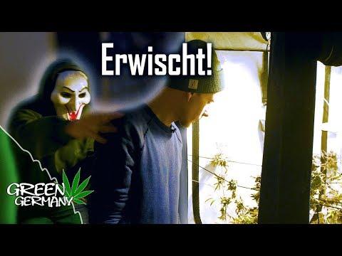 Beim Einbruch im GROW-ROOM ERWISCHT!