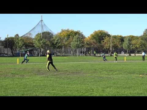Illinois Premiere League Cricket Conference