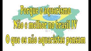 Porque o Aquarismo Não e Melhor no Brasil IV - O  que os  não aquaristas pensam