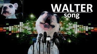 D&M - Hilarious Dog (Веселая собака) [ft. Walter (Уолтер)]