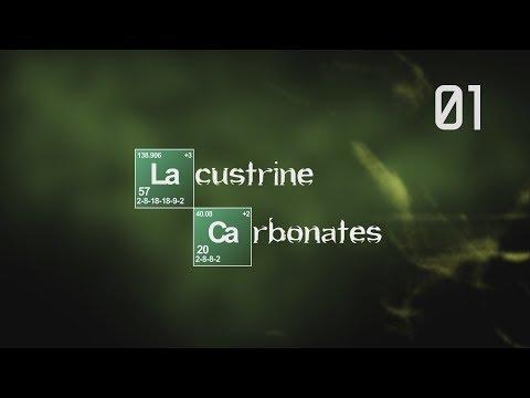 Lacustrine Carbonates I