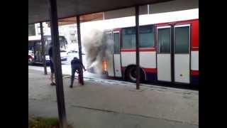 Смотреть видео Автобус в Оломоуц