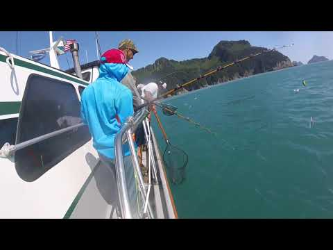 Taking A SALMON CHARTER Out Of SEWARD AK - Alaska Episode 5