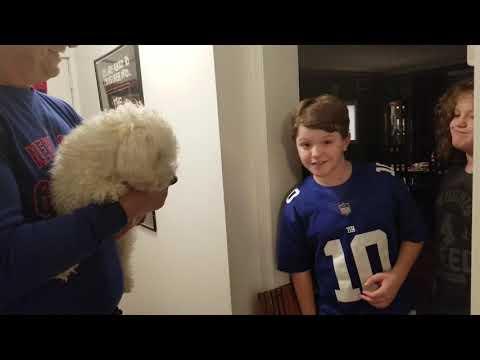Fluffy picks Eagles/Redskins winner