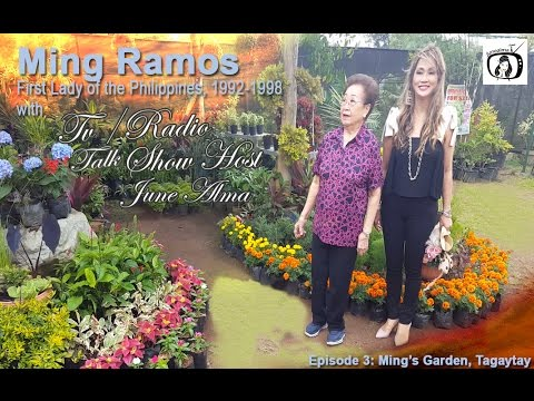 Episode 29 Ming S Garden Youtube