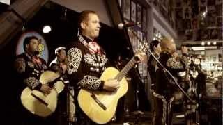 Mariachi El Bronx - Great Provider (Live at Amoeba)