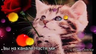 Шантильи Тиффани