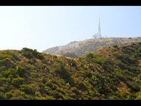 Drifting in Los Angeles | 漂泊洛杉矶 (双语字幕版)