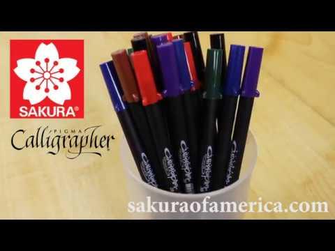 The Pigma Calligrapher Story