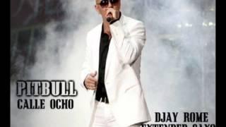 Pitbull - Calle Ocho (DJay Rome Extended Saxo Re-Remix)