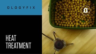 CARPologyTV - OlogyFix Heat Treatment
