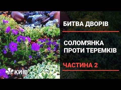 Солом'янка проти Теремків: двобій на виживання (частина 2)