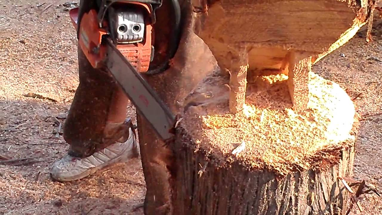 Pelican carving shaping with chainsaw youtube