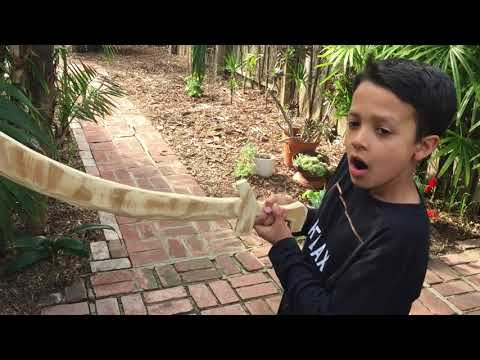 How To Make Wooden Pirate Sword [Plywood Damascus Style] For Kids! | DIY Home Projects