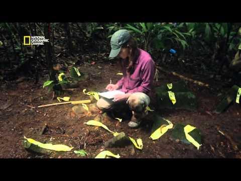 Explorer - Une région inexplorée au Honduras