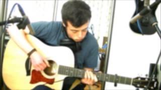 Animals (Martin Garrix)- Acoustic Guitar Cover