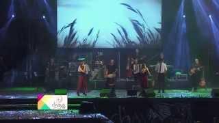 Soledad - La Serenateña-De Alberdi-De Simoca - Fiesta de la Chaya 2015