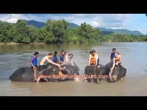 3-extraordinary-elephant-day-trip-via-bangkok-day-tours-(original-only-by-bangkokdaytours-ltd.!)