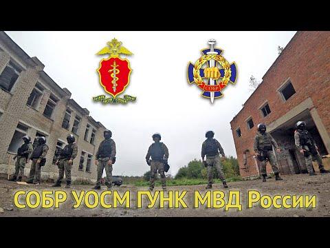 6 декабря – День подразделений по контролю за оборотом наркотиков системы МВД России