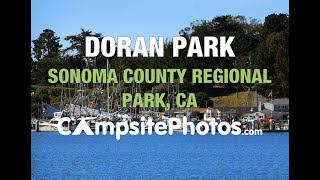 Doran Campground, Sonoma County Regional Parks, California