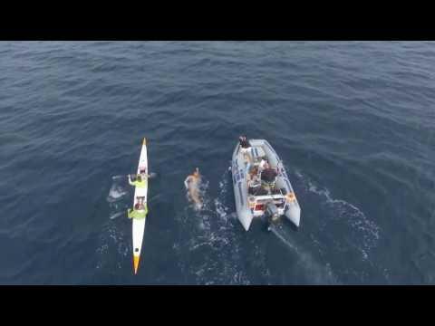 Breathe Ocean Conservation