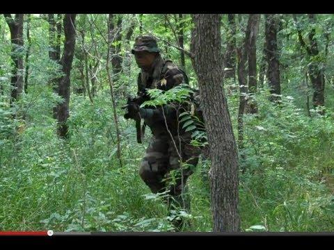 Woodland Camouflage Effectiveness PART I