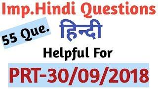 55 Important Hindi Questions For DSSSB(PRT),CTET,KVS,NVS, By Aman Narang