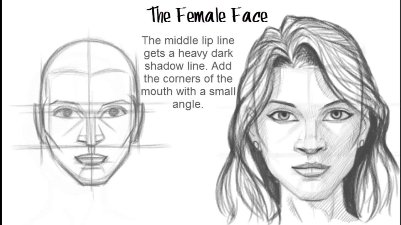 تعلم رسم الوجه خطوة بخطوة بالصور منتديات بورصات