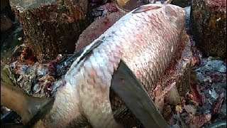 Live Fish Cutting Skills 2019 in Fish Market | Fastest Rohui Fish Cutting PART- 5.