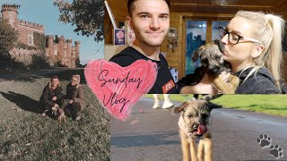 SUNDAY VLOG WITH TEA: 4 MONTH OLD BORDER TERRIER PUPPY. GOING ON A WALK AND SHOWING YOU HER TRICKS