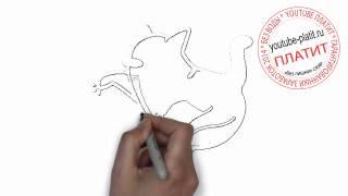 Кошки нарисованные карандашом  Как легко и просто нарисовать атакующую врага кошку поэтапно за 22 се