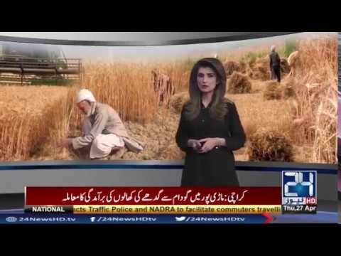 Traditional dance on harvesting of wheat in Punjab