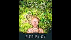 Trevor Hall - Green Mountain State (With Lyrics)