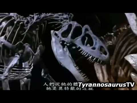 The Ultimate Guide (2/5) TYRANNOSAURUS REX