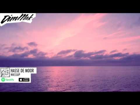 Hasse de Moor - Wassup (Audio) | Dim Mak Records