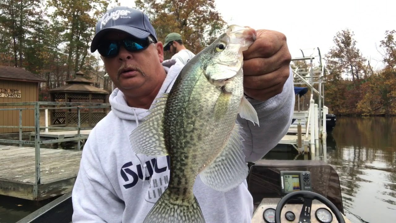High Rock Lake, NC. - Crappie and Bass Fishing with a Fat